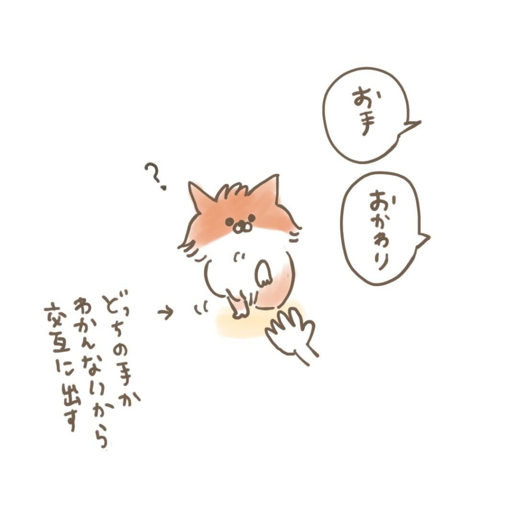 ポメラニアン「くぅ」の漫画:儀礼的なお手 その1