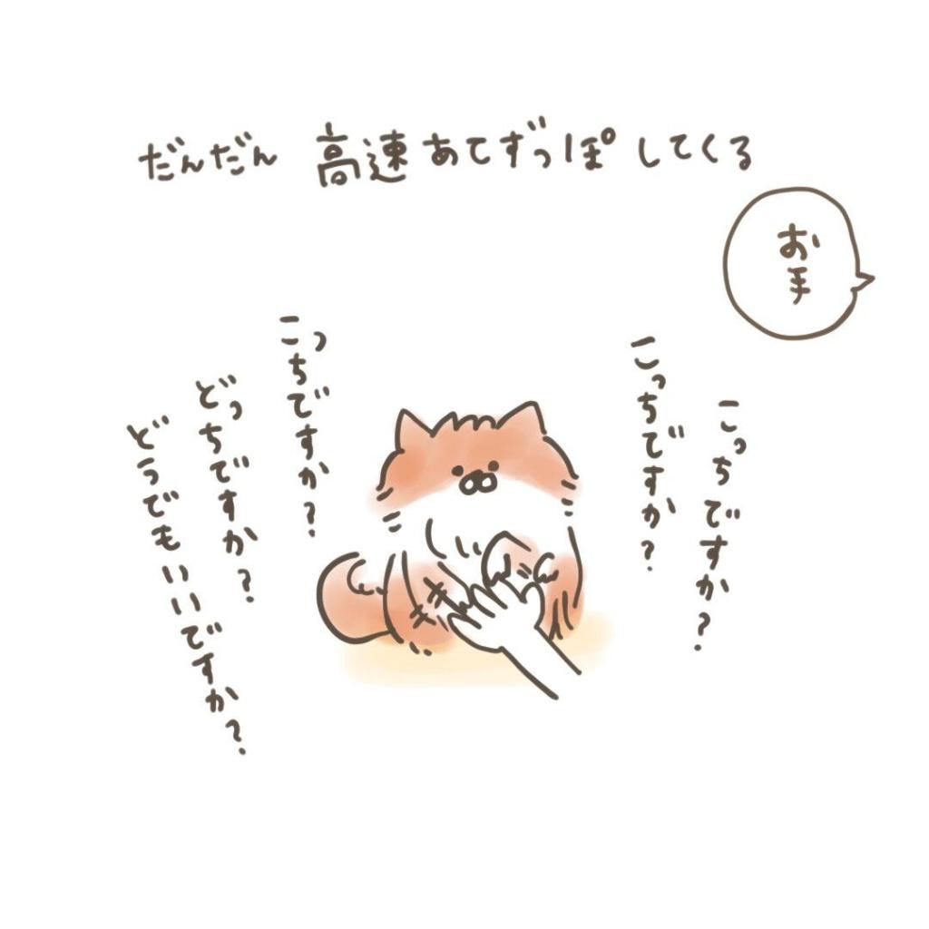 ポメラニアン「くぅ」の漫画:儀礼的なお手 その2