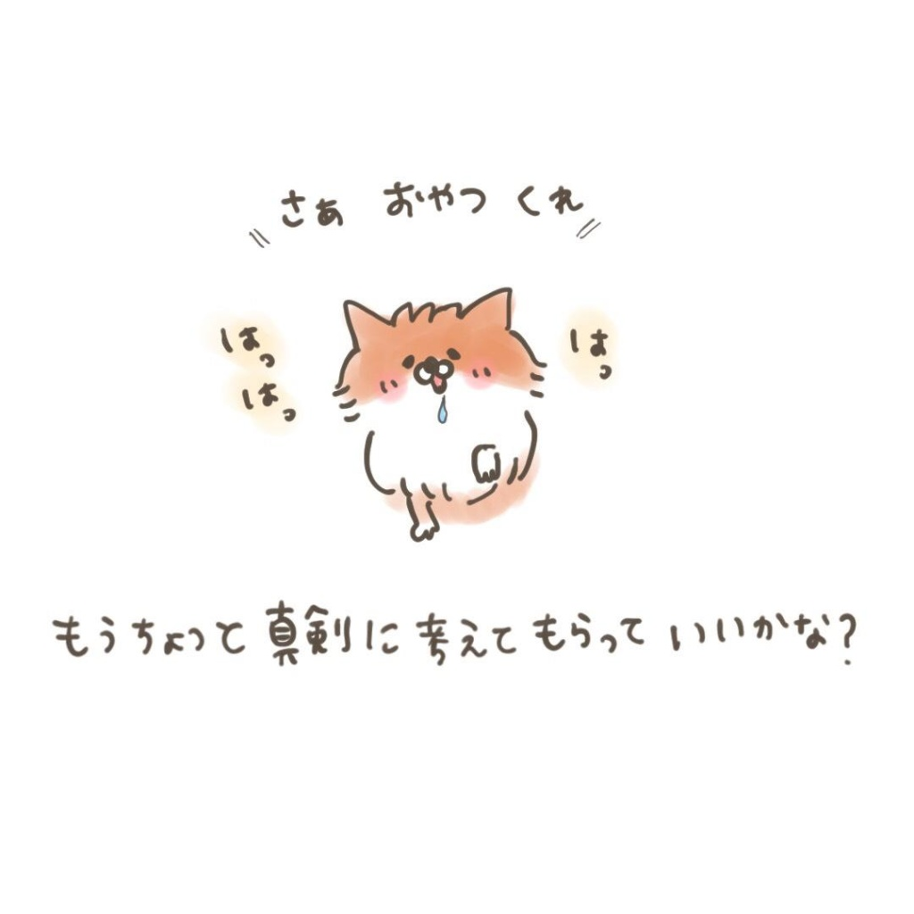 ポメラニアン「くぅ」の漫画:儀礼的なお手 その3