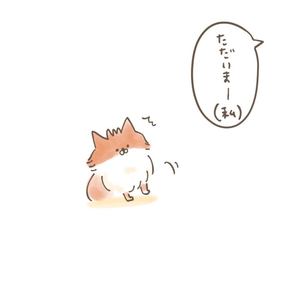 ポメラニアン「くぅ」の漫画:歓迎はおやつの量に比例 その1