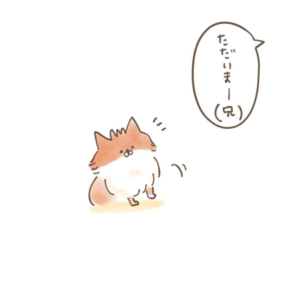 ポメラニアン「くぅ」の漫画:歓迎はおやつの量に比例 その3